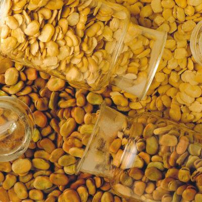 la riserva del re produzione artigianale fave