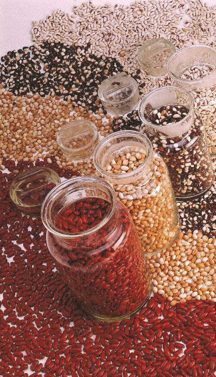 la-riserva-del-re-produzione-artigianali-fagiolo-borlotto-lamon-sicilia-min.jpg