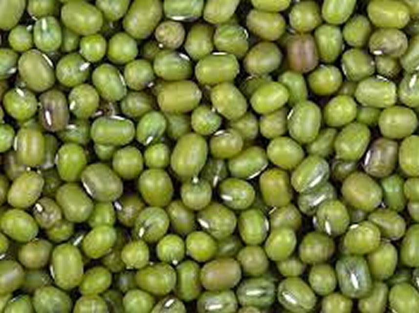 fagioli-azuki-verdi-la-riserva-del-re-vendita-legumi-min.jpg